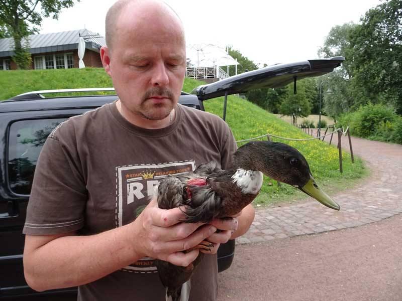 Tiernotruf Düsseldorf – Tierretter